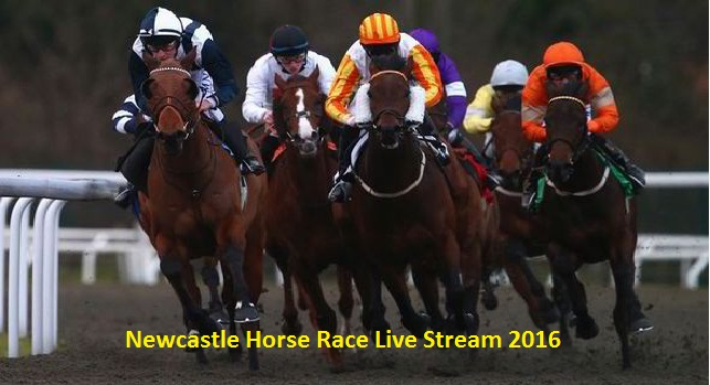 Newcastle Horse Race Live