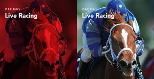 How To Watch Horse Racing Online