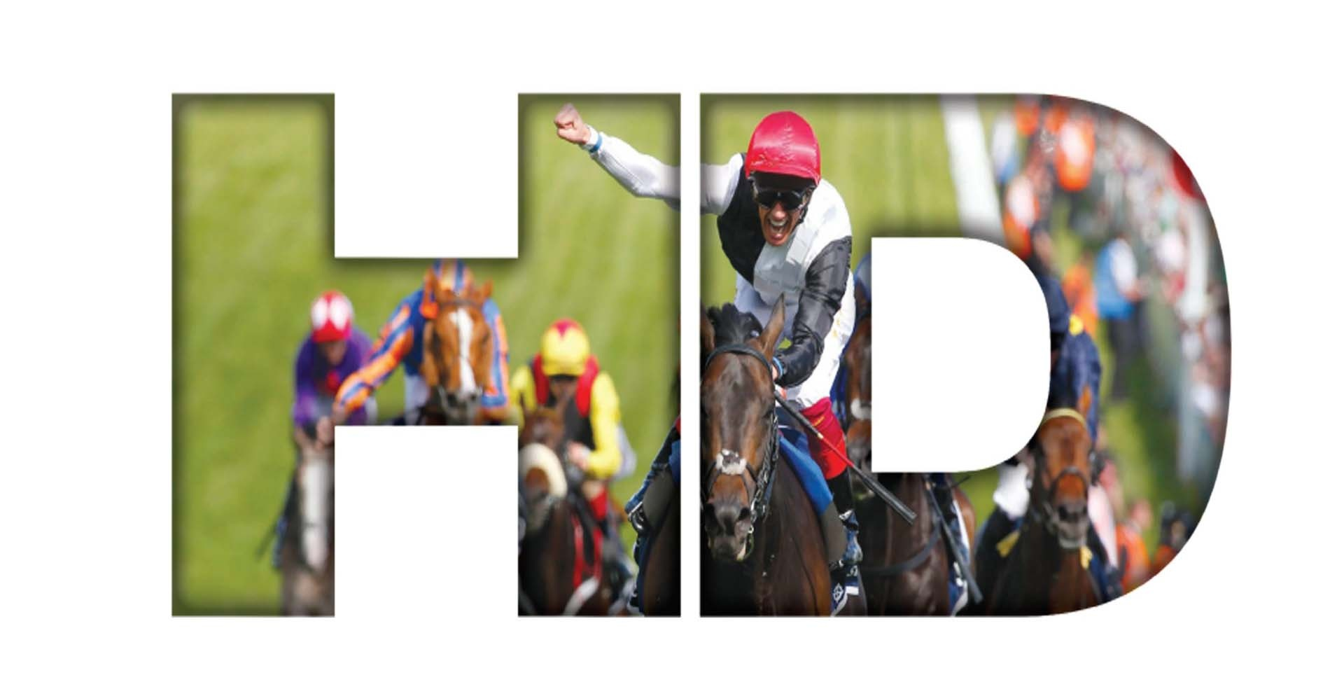 Watch Leicester Horse Race Online