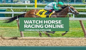 How To Watch Horse Racing Online